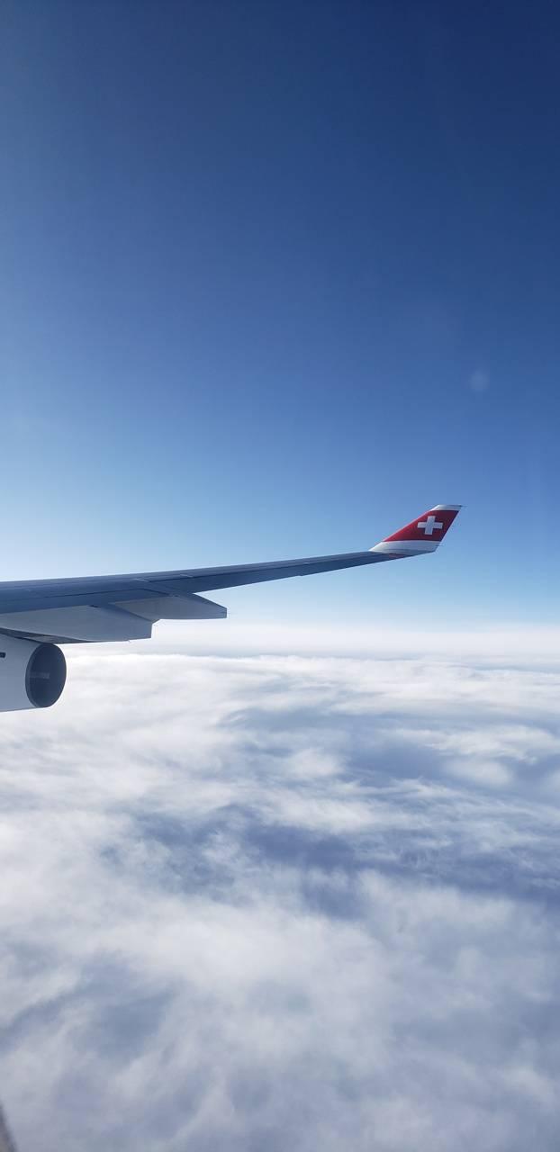 Swiss Wing