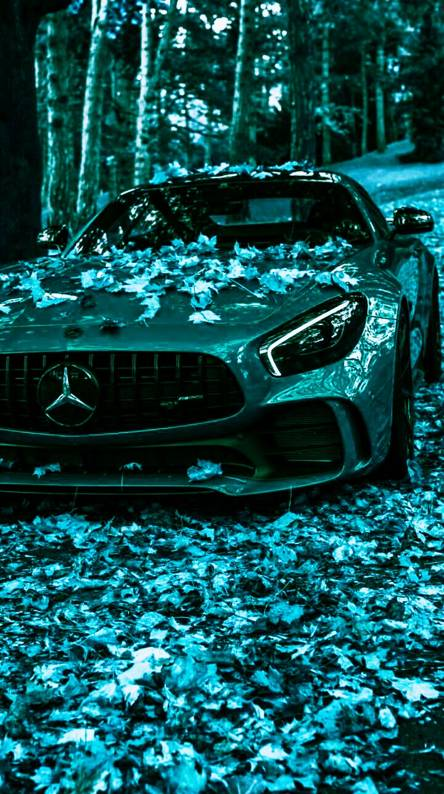 V8 Super Cars Wallpapers Free By Zedge