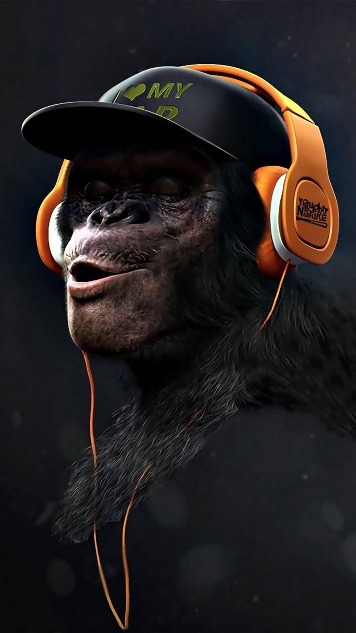 Monkey Swag HEAR
