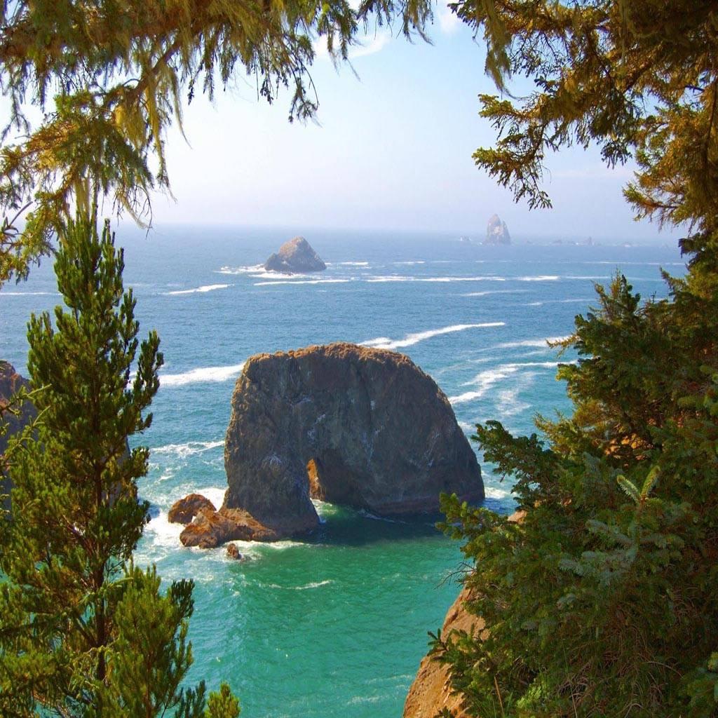 Pacific coast sea