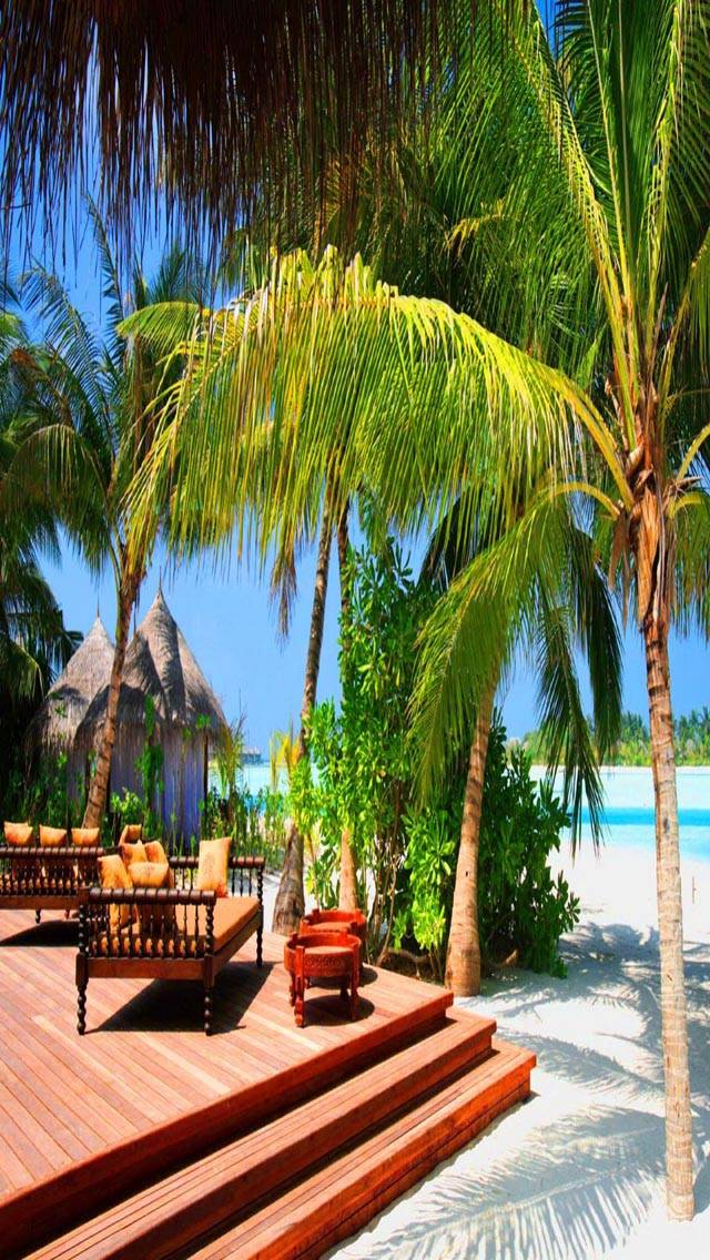 Tropical Rest