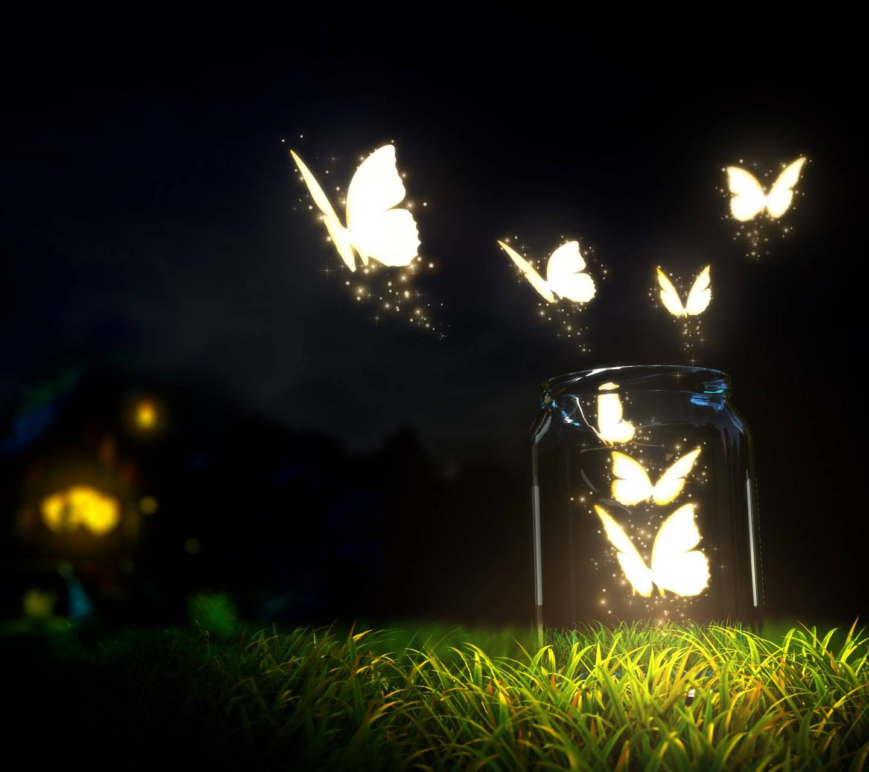 Butterflies Mason