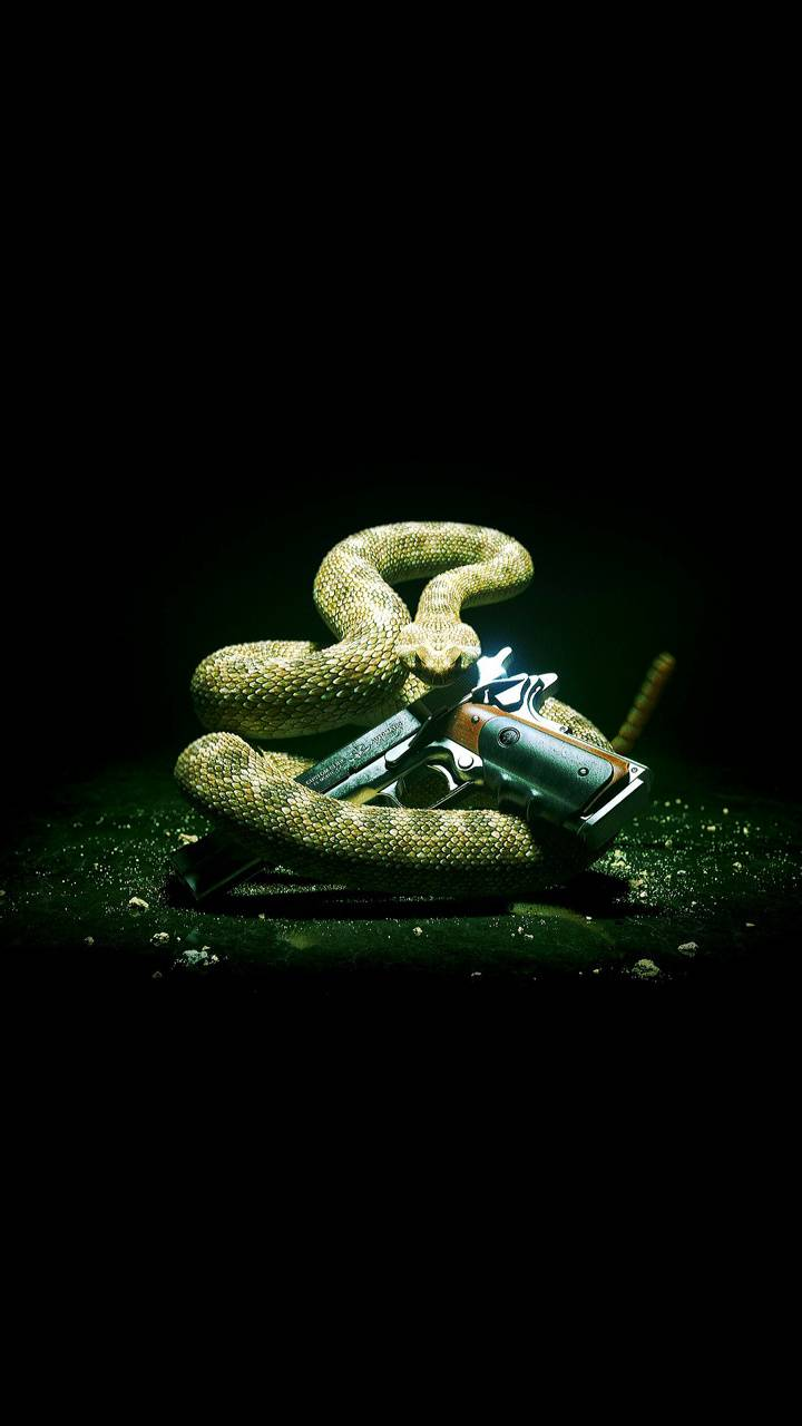 Snake with gun