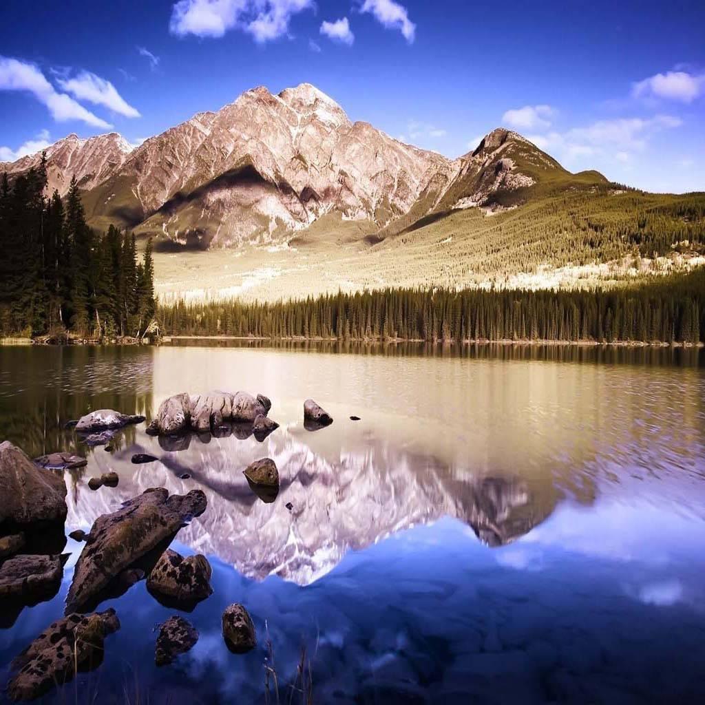 Mountain Nature