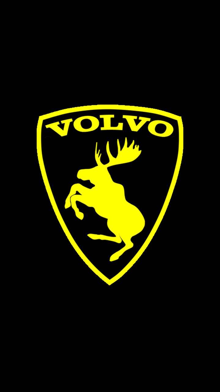 Volvo Hirvi