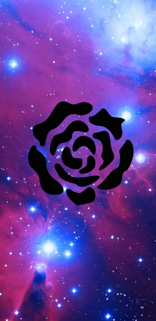 Rose series 1