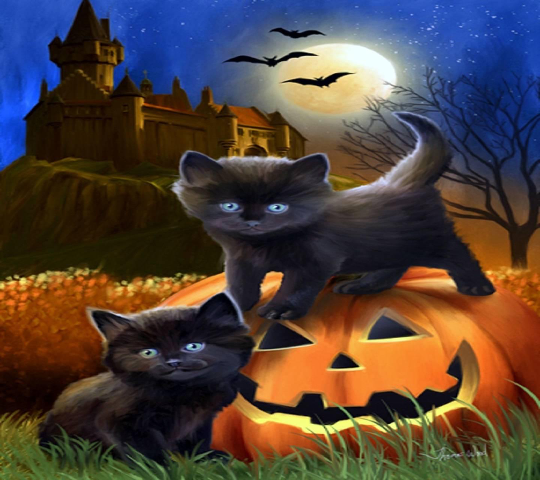 Pumpkin Kittys
