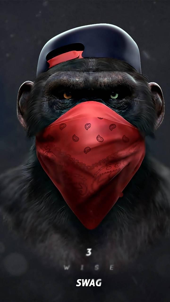 Monkey Svag