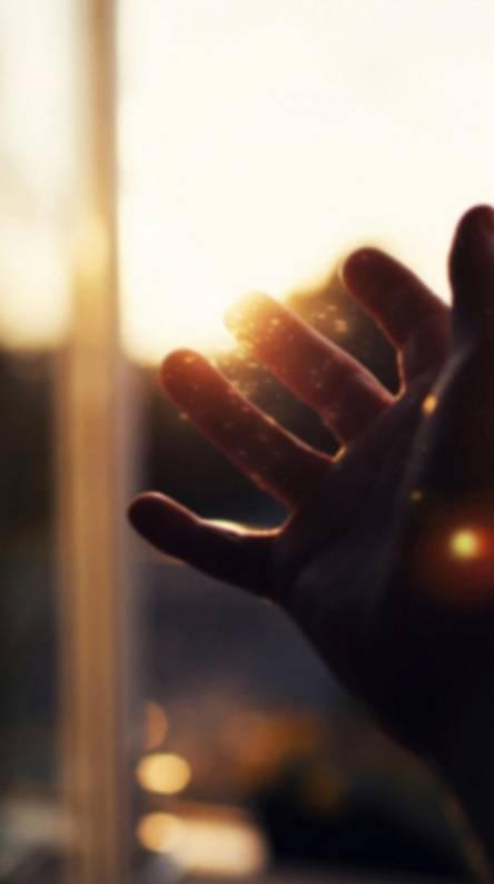 Hand in the sun