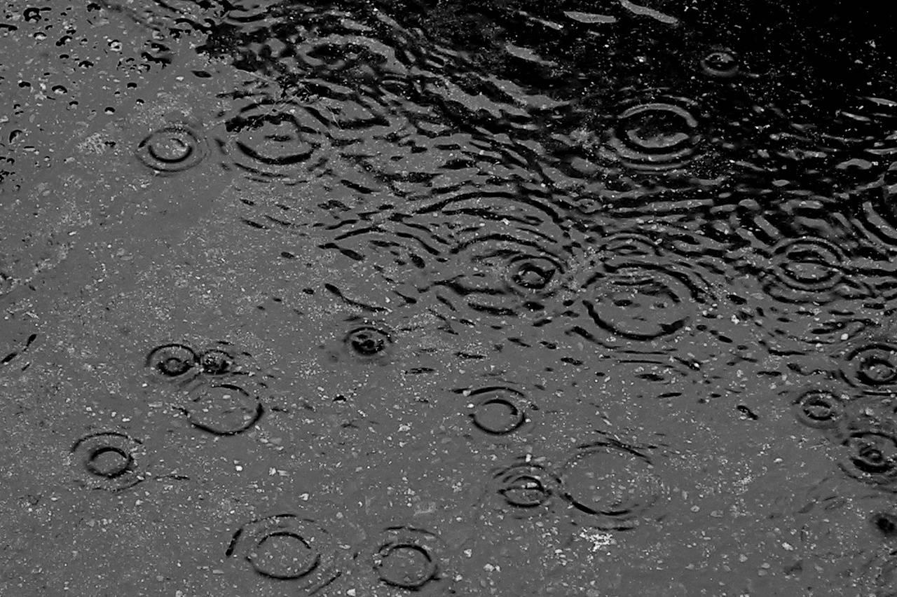 Puddle Rain Drops