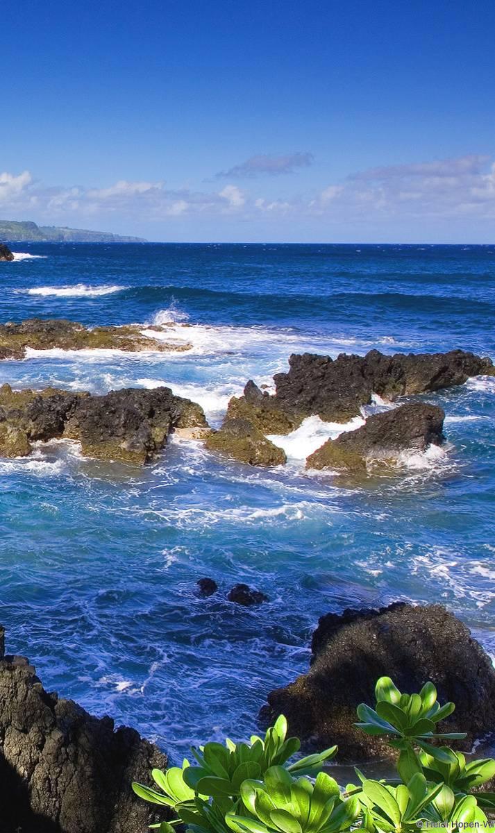 Beautifull Sea