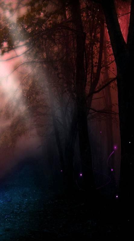 Purple Haze Forest