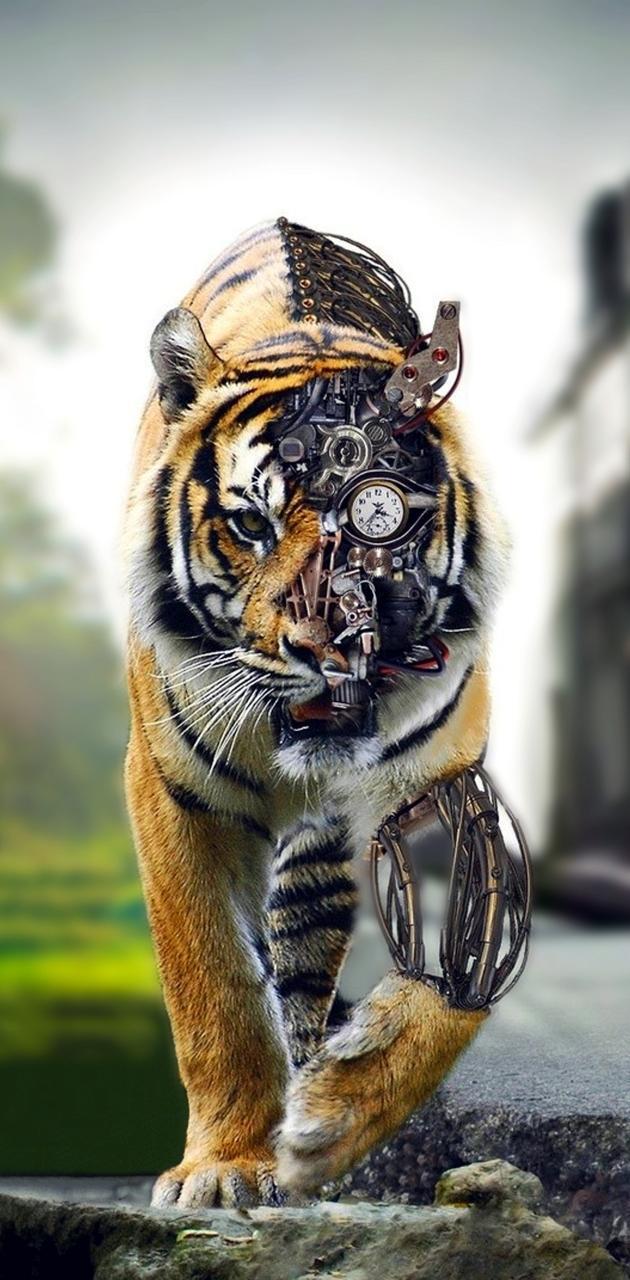 tiger tech