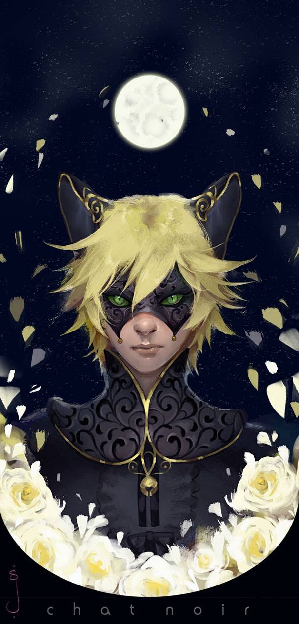 Chat Noir Wallpaper By Animedork A8 Free On Zedge