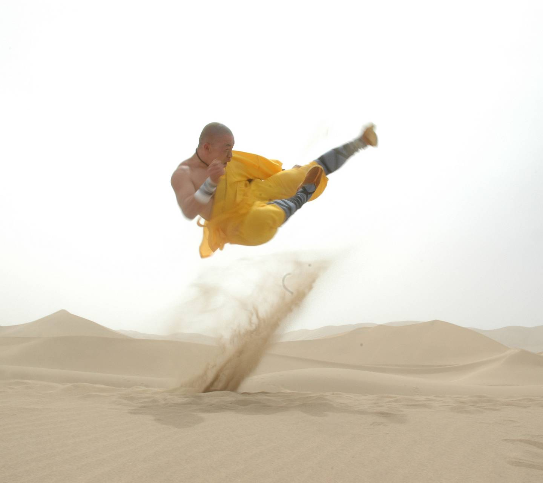 Kung Fu Fight