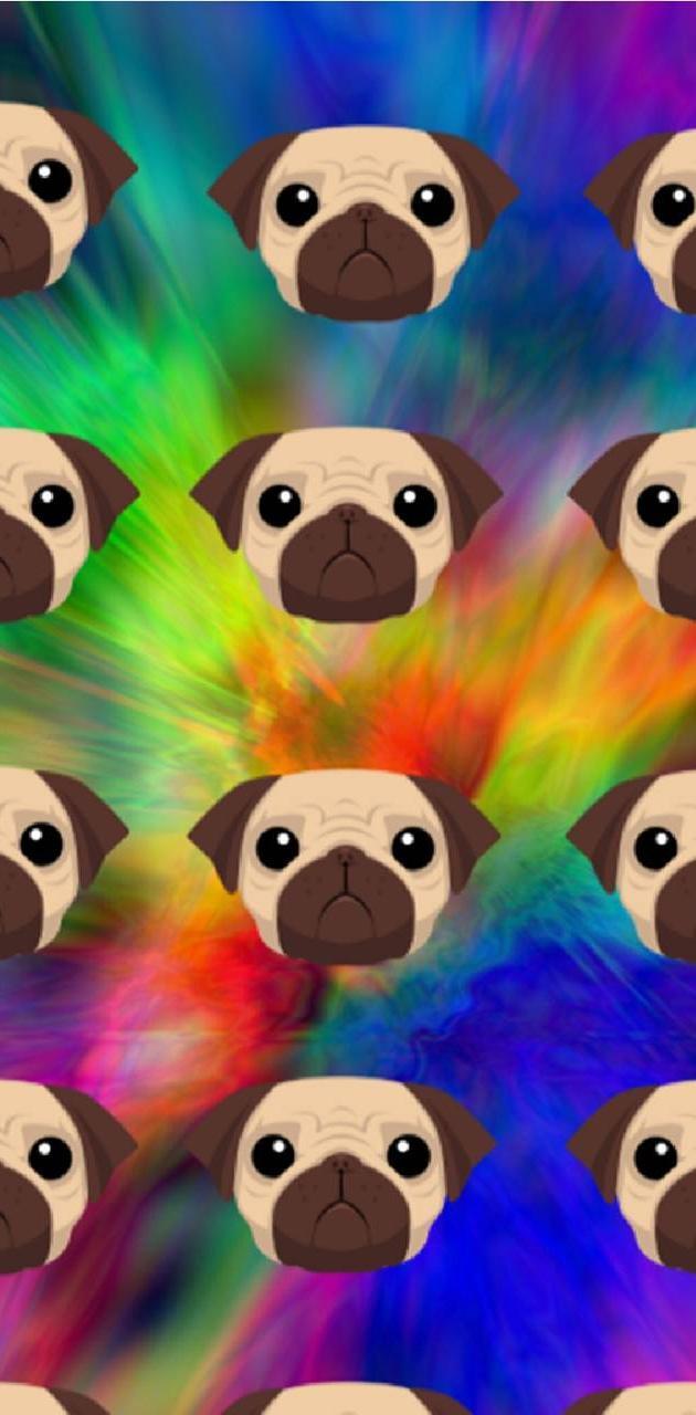 Wall Of Pugs