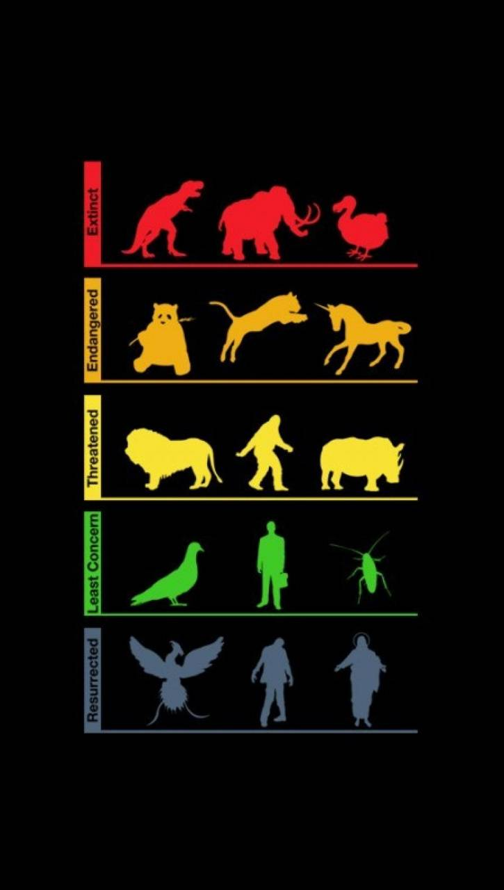 Extinction funny