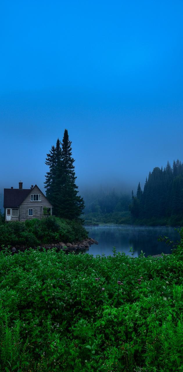 Foggy Cabin