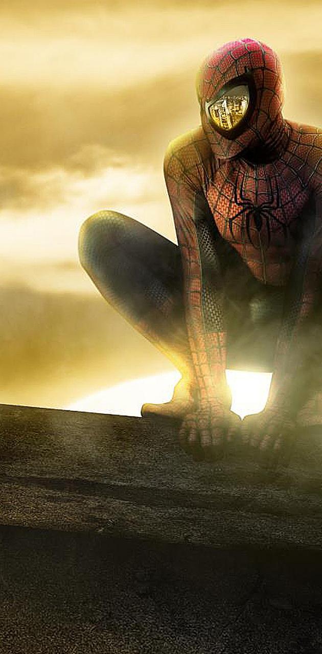 Spiderman Perch