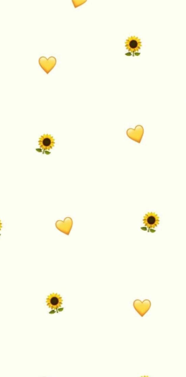 Aesthetic sunflower