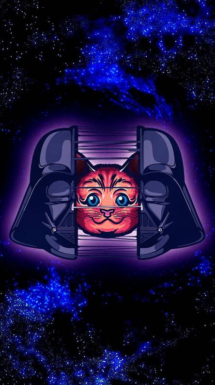Star Wars Cute Cat