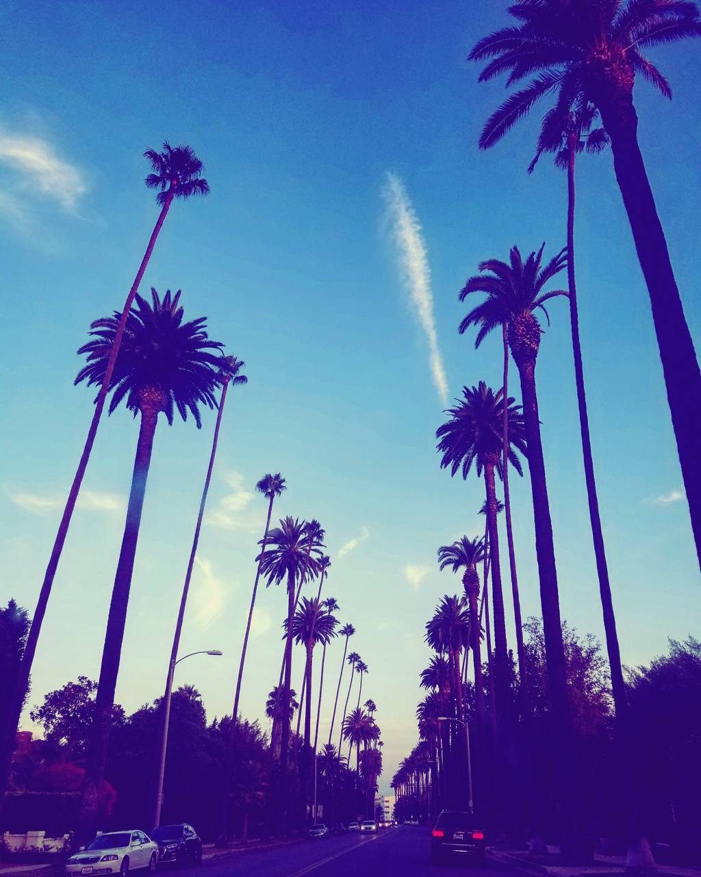 Los Angeles Wallpaper By Wolfieeee A6 Free On Zedge