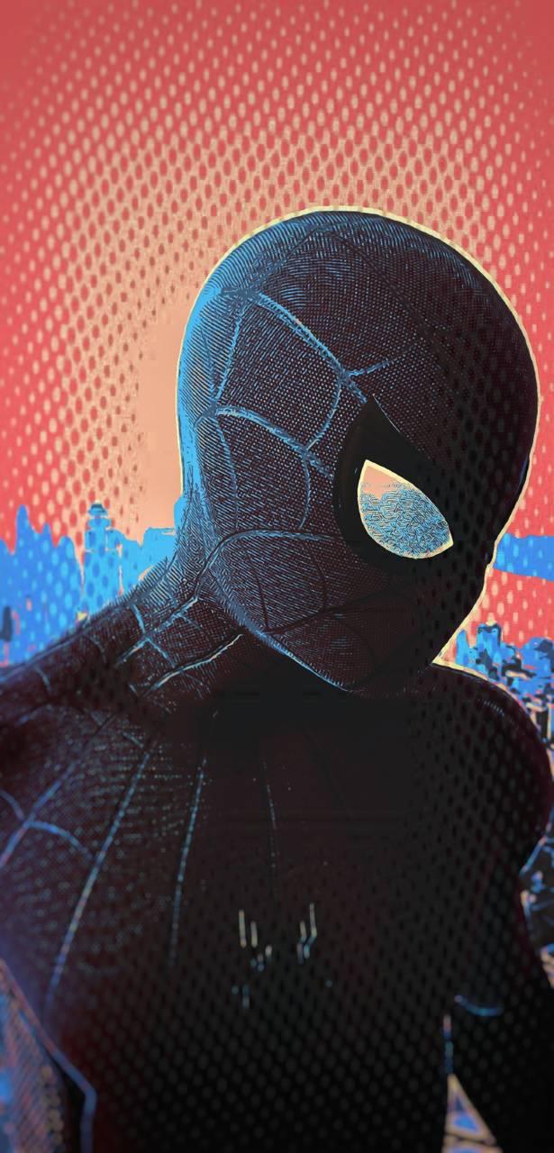 Spider-Man Popart