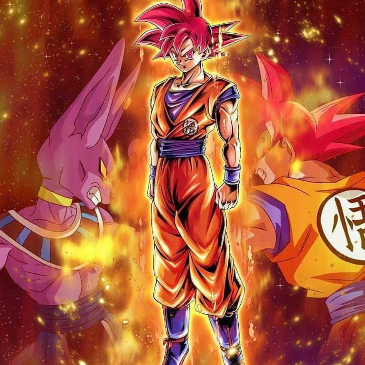 God Goku vs Beerus