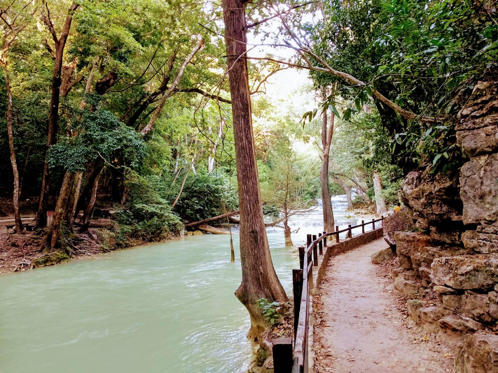 Camino a lo natural