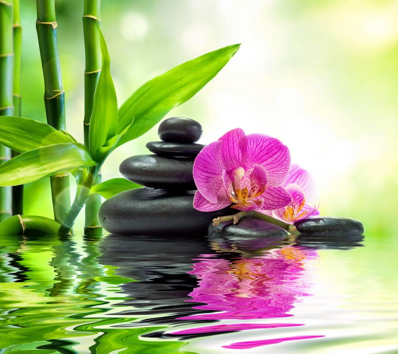 Relaxing Spa Wallpaper by _MARIKA_ - f7 - Free on ZEDGE™  Relaxing Spa Wa...
