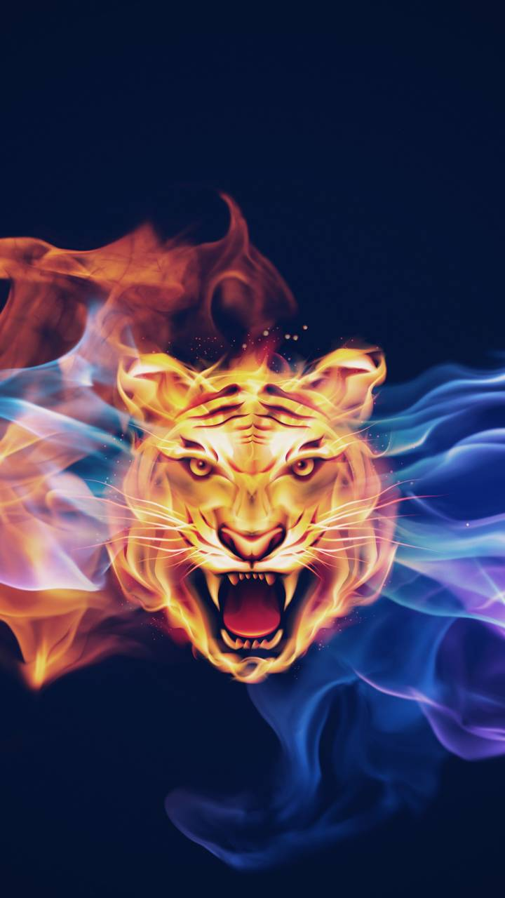 Fire Tiger Wallpaper By K A R M A F2 Free On Zedge