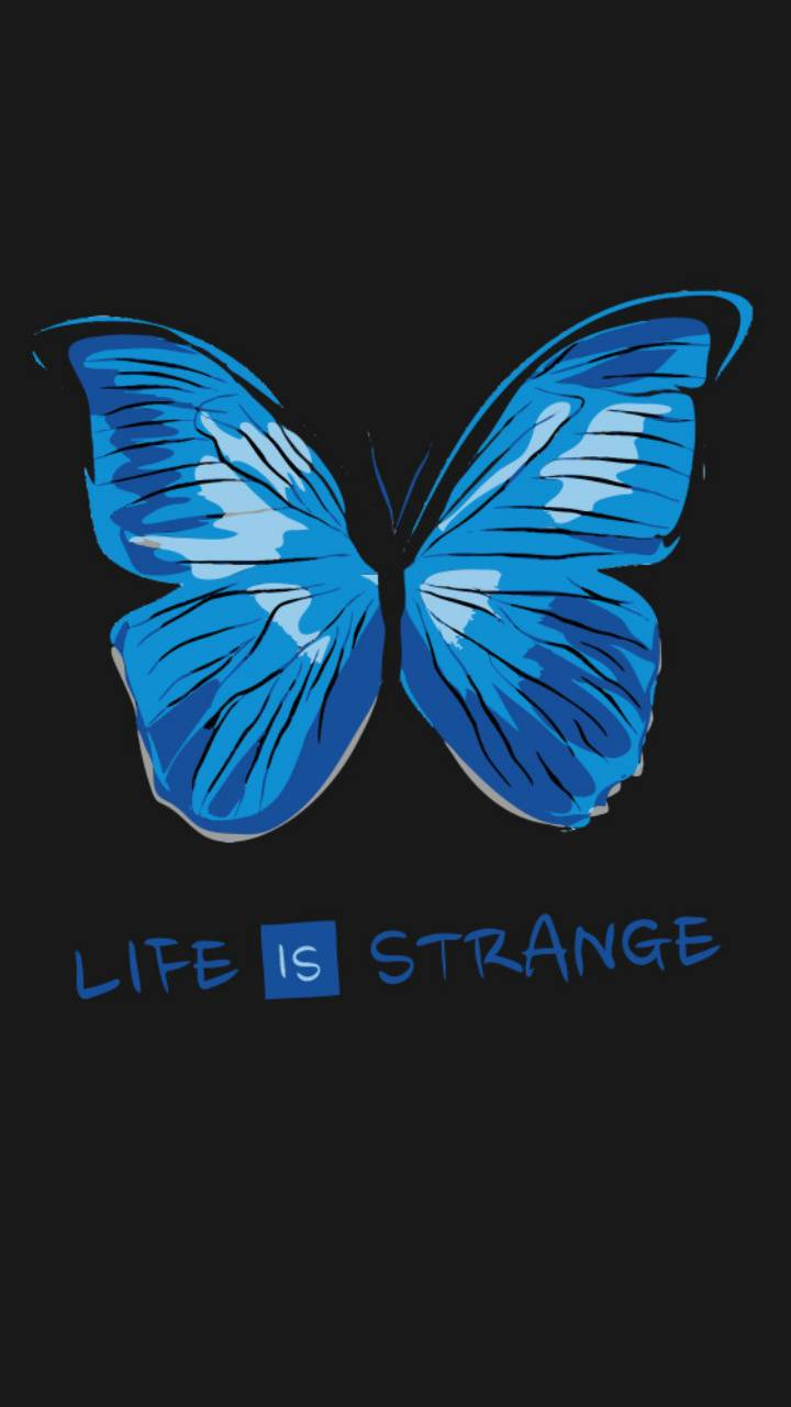 Life Is Strange Wallpaper By Omoniatisa C6 Free On Zedge