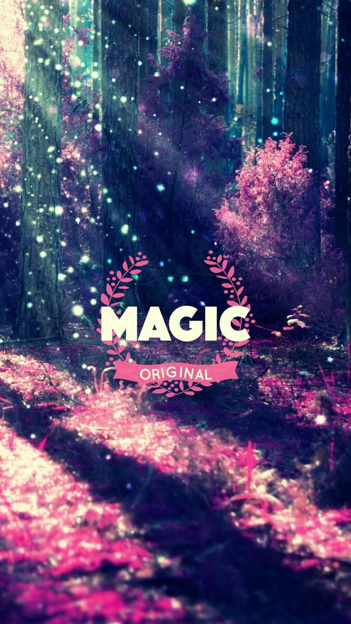 Magic Orjinal