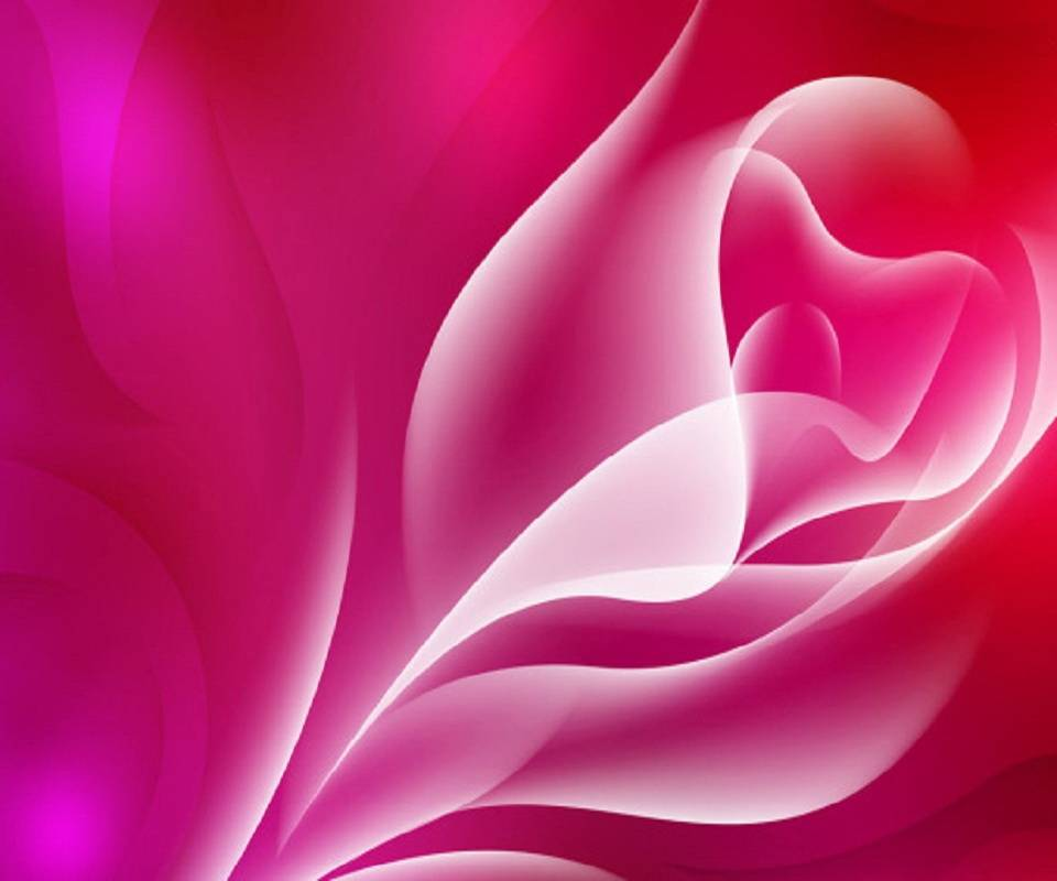 Hd Abstract Rose
