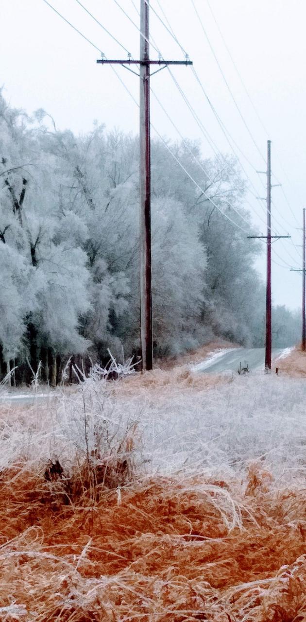 Icy  Beauty
