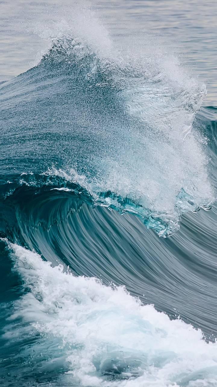 Wave HDSQ