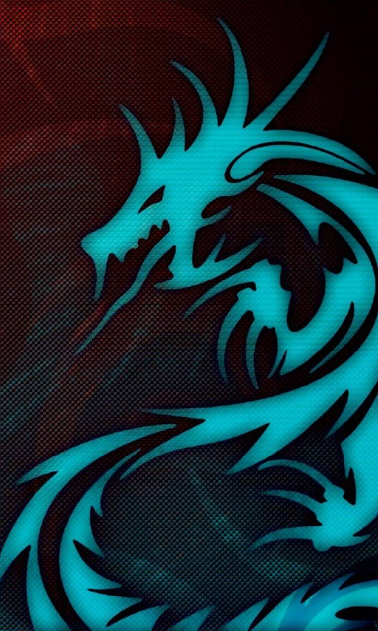 Dragon Nvn
