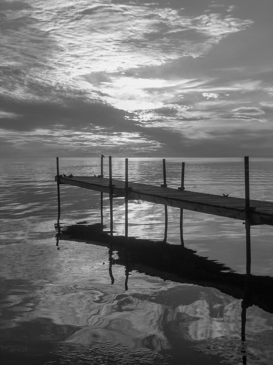 Black and White dock