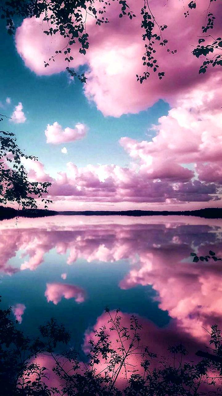 Reflecting Pink Sky Wallpaper By Goodfellagrl 0d Free On
