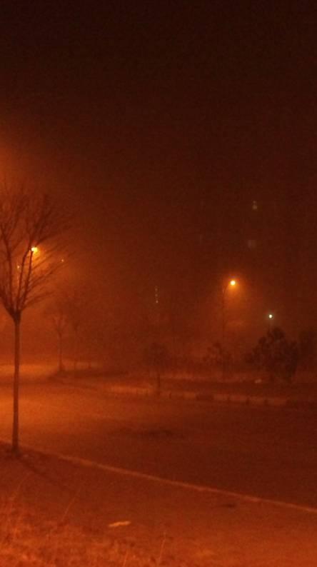 Fog at night