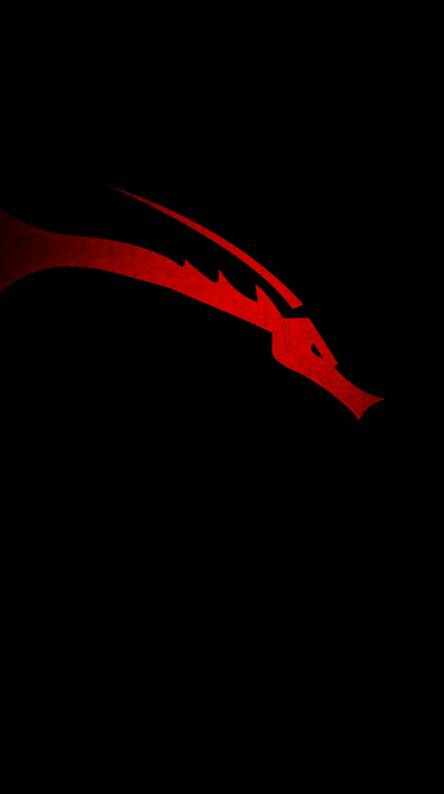 Kali Linux Ringtones And Wallpapers Free By Zedge