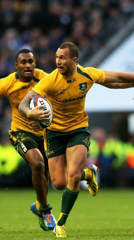 Wallabies Ringtones And Wallpapers Free By Zedge