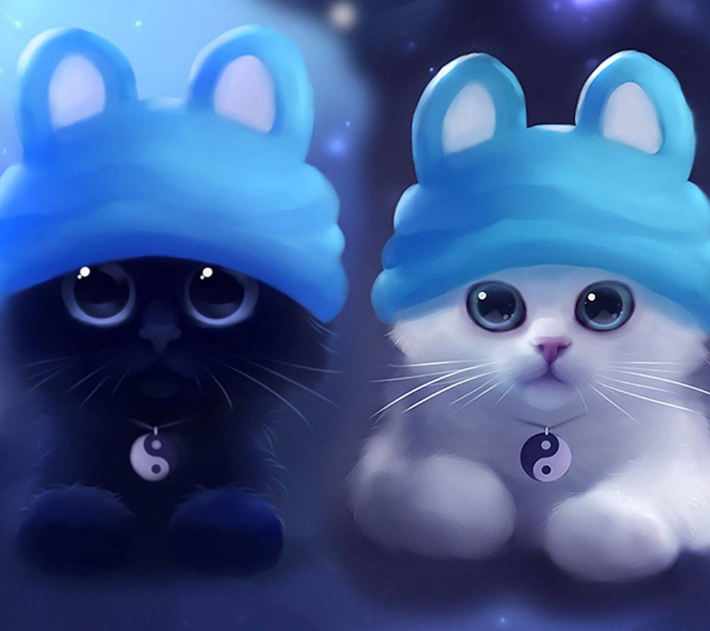 Black Or White Cat Wallpaper By Asuszenpad 98 Free On Zedge