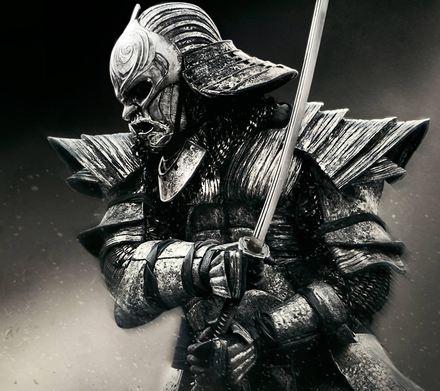 Ronin Warrior