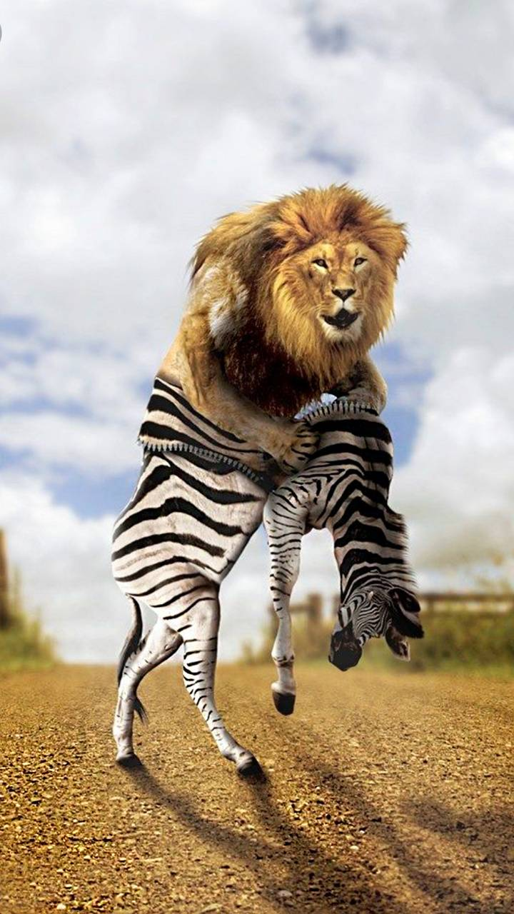 fake lion