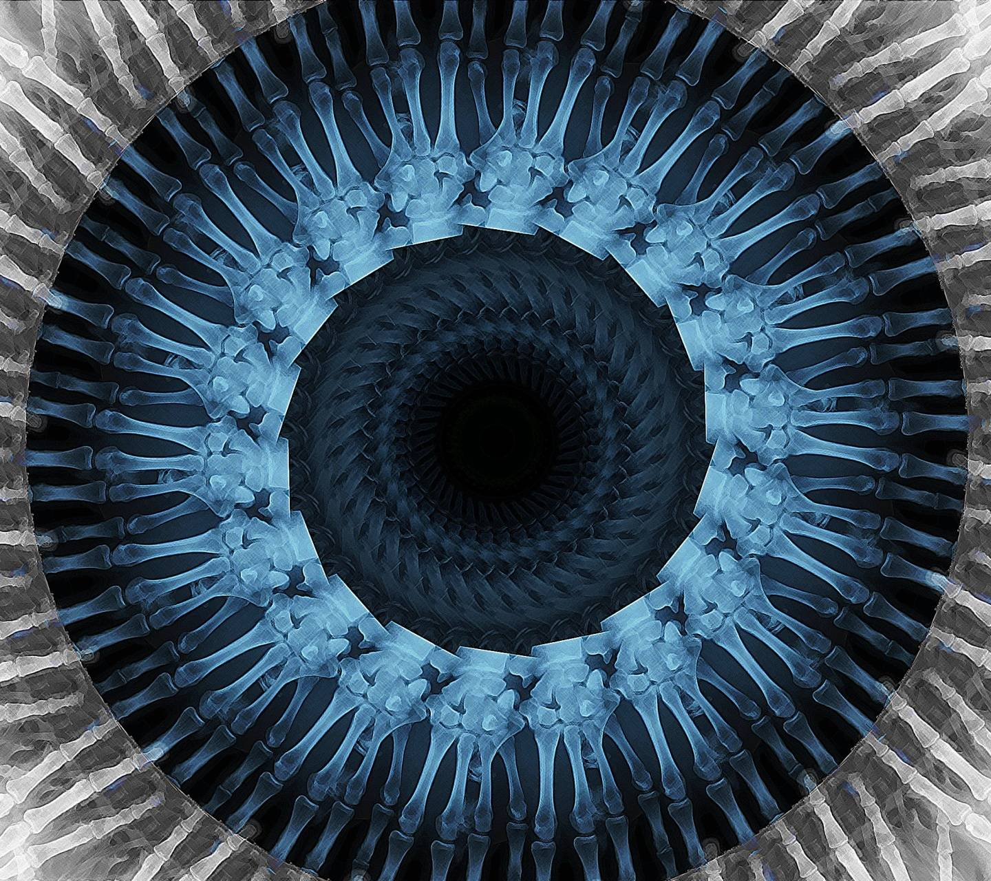 X Rayed Eye