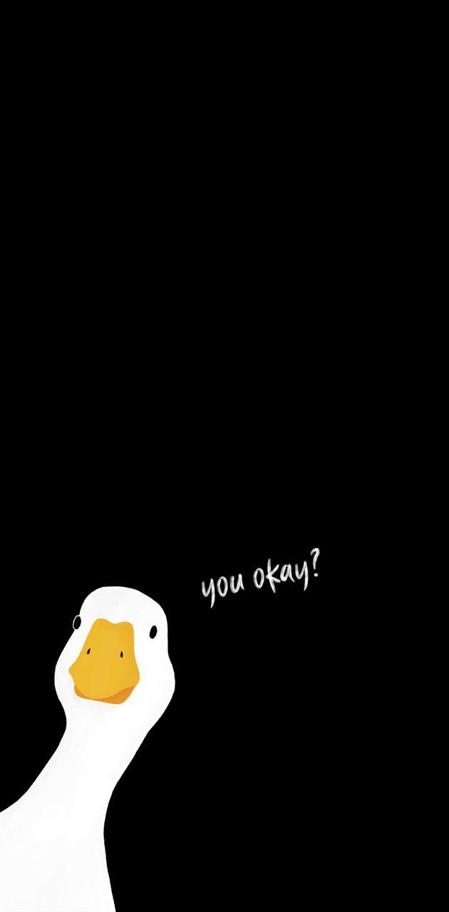 GOOSE - YOU OKAY