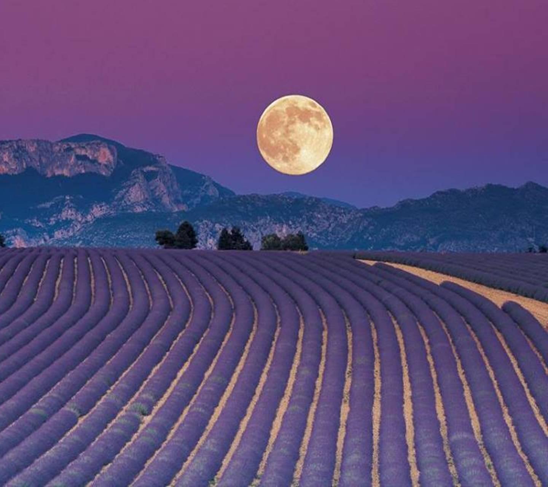 Landscape Full Moon