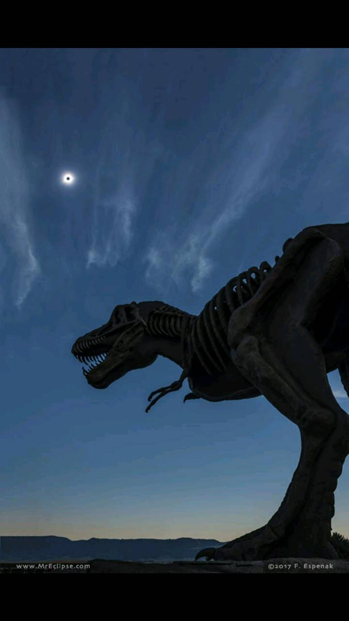 Dinosaur eclipse