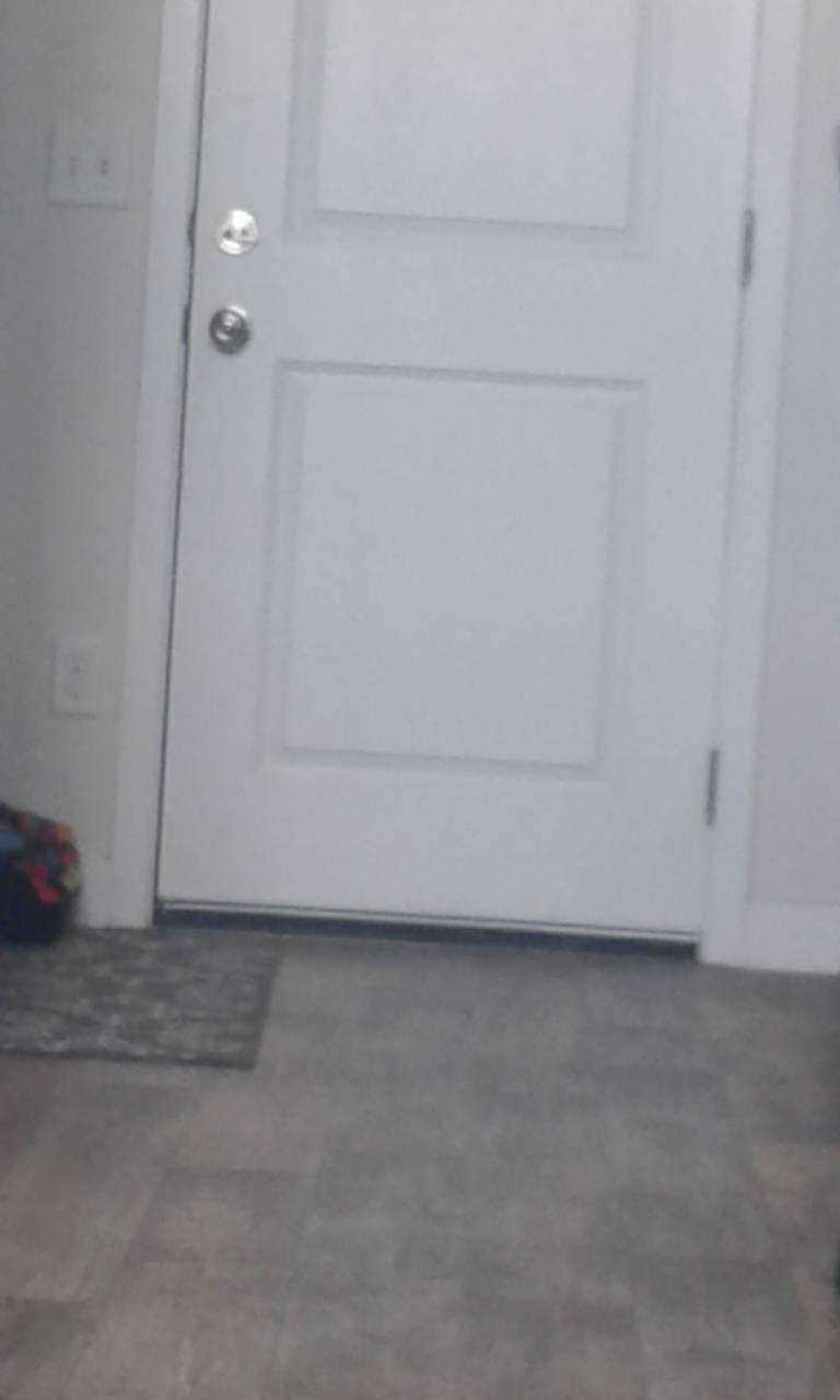 Dumb door